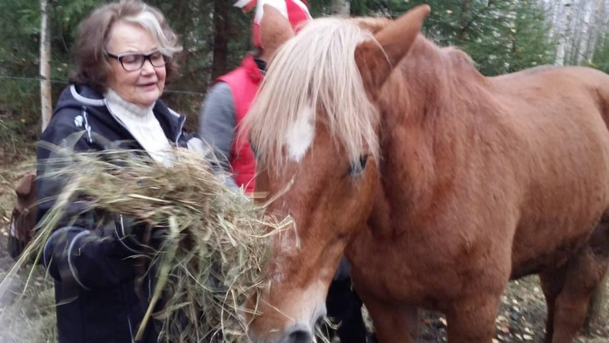 Hilkka Hämäläisellä ja Iiro-hevosella on yli 20 vuoden yhteinen taival takana.