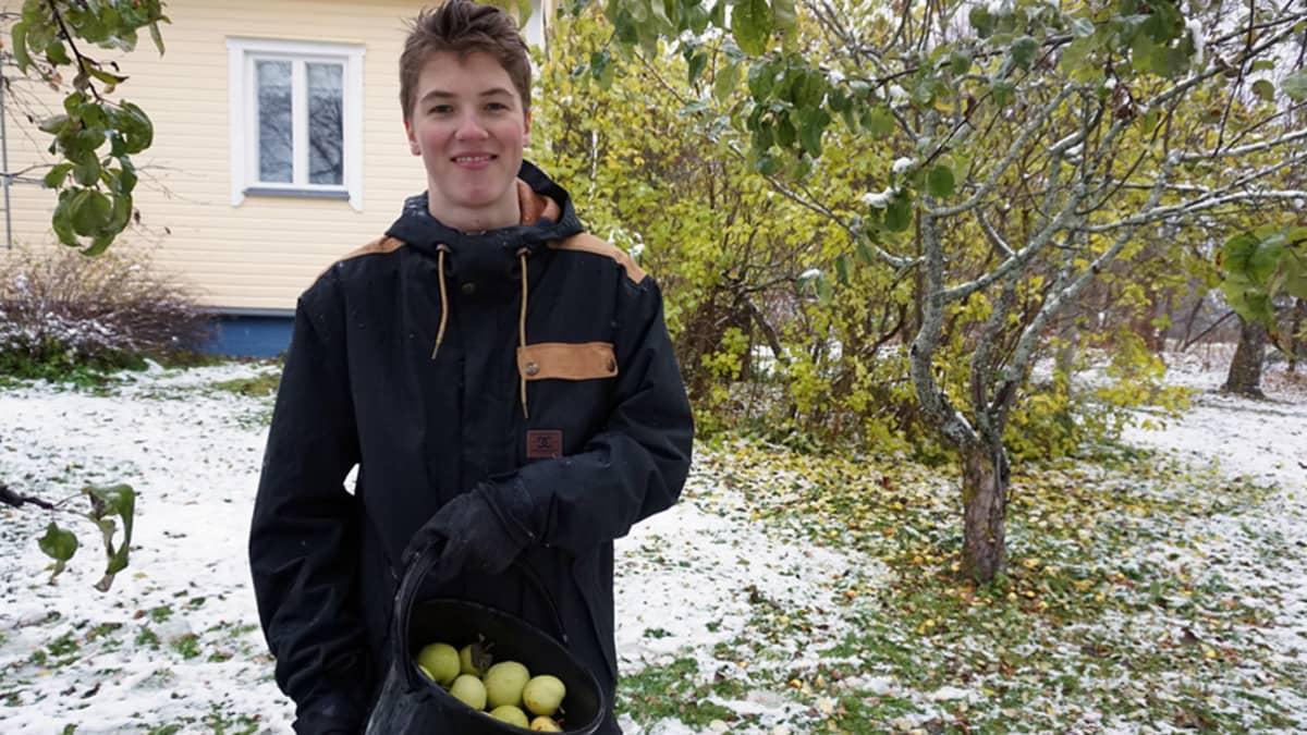 Onni ja omenaämpäri