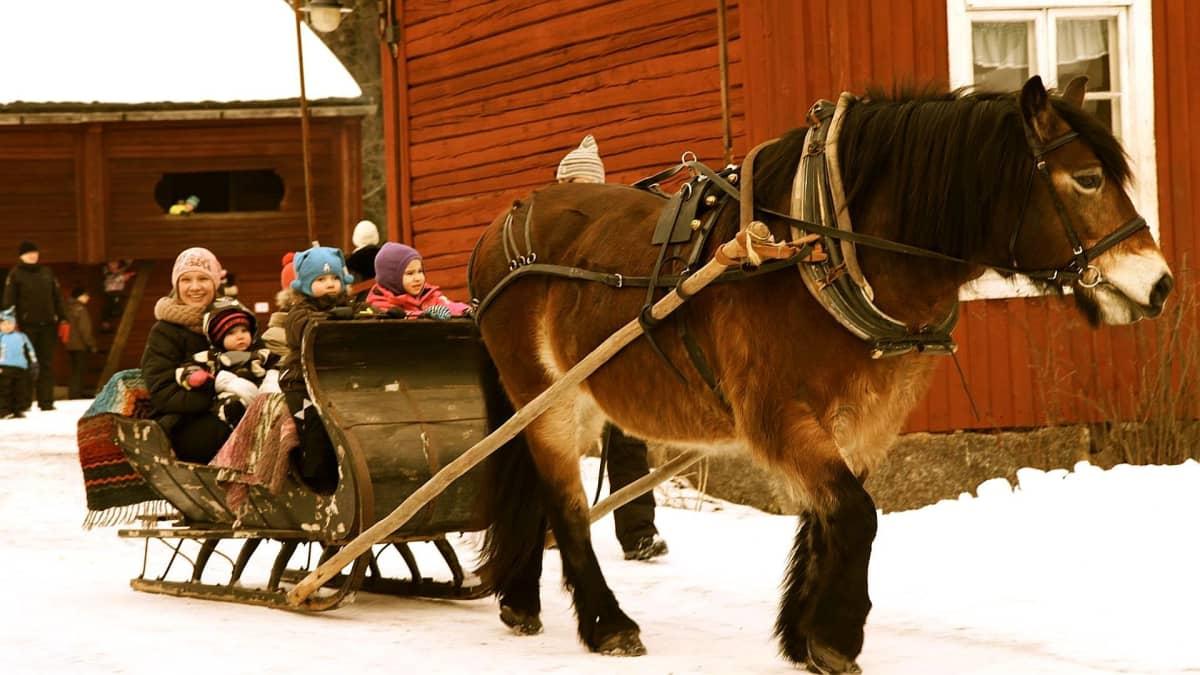 Minetta hevonen antaa kyytiä Bragen ulkomuseon hiihtolomariehassa.