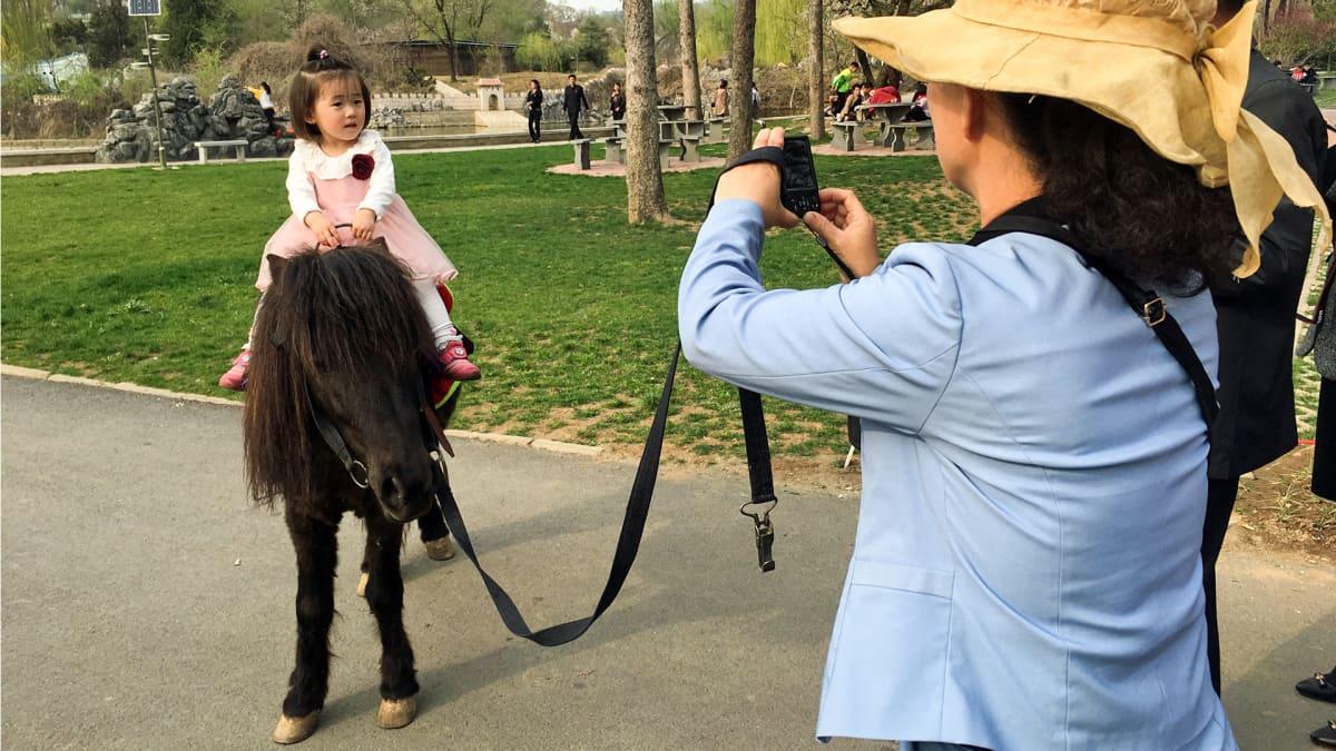 äiti kuvaa aasilla ratsastavaa tytärtään