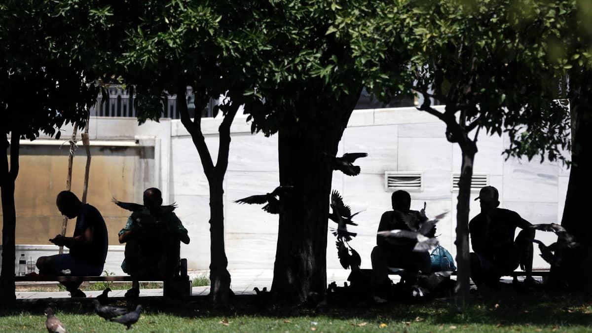 Ihmiset suojautuivat auringon paahteelta Ateenassa 1. heinäkuuta 2017.