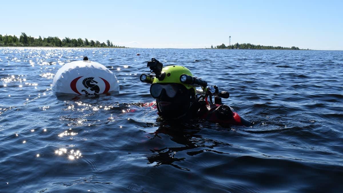 Vapaaehtoinen sukeltaja kunnostamassa Perämeren kansallispuiston vedenalaista luontopolkua.