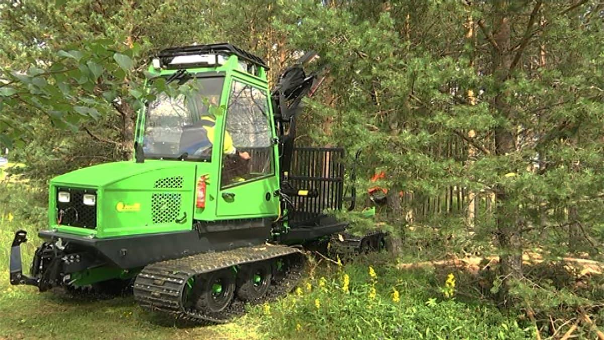 Jarcrac-metsäkone metsässä
