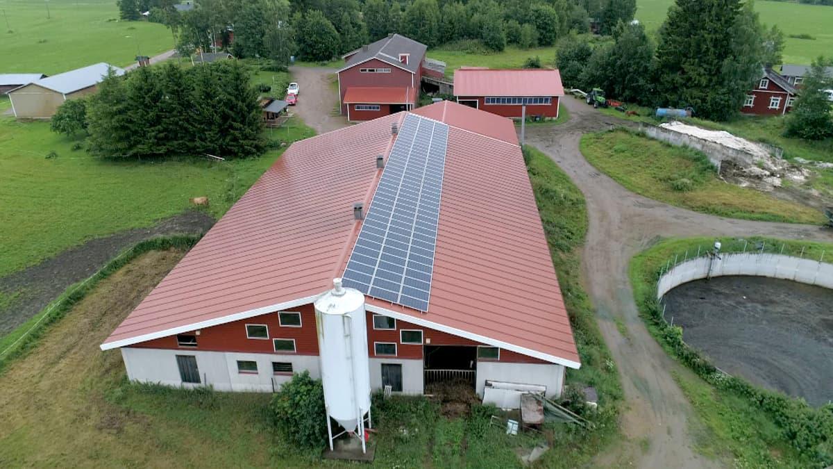 Aurinkopaneeleita navetan katolla.