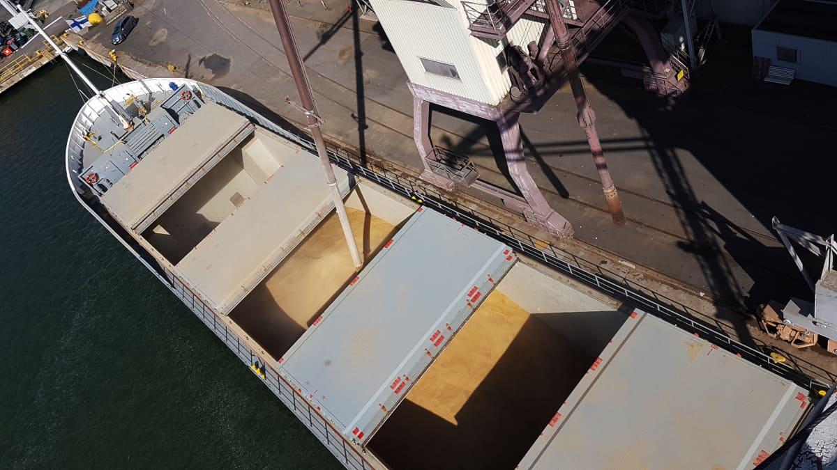Viljalaivaa lastataan Naantalin satamassa Suomen Viljavan viljasiiloilla