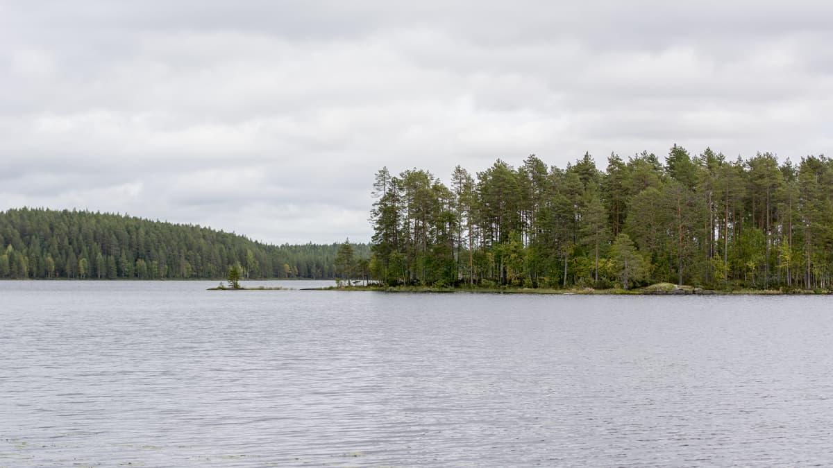 Maisema Lentua-järven rannalta.