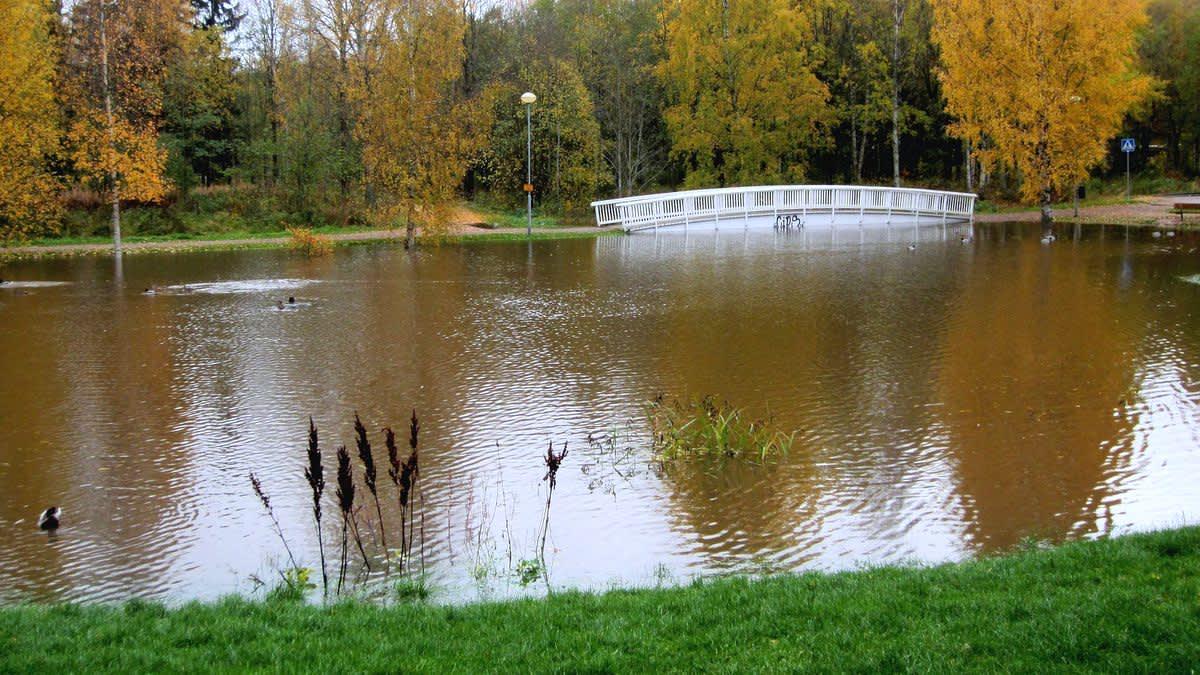 Kaarisilta on jäänyt tulvaveteen puistossa.