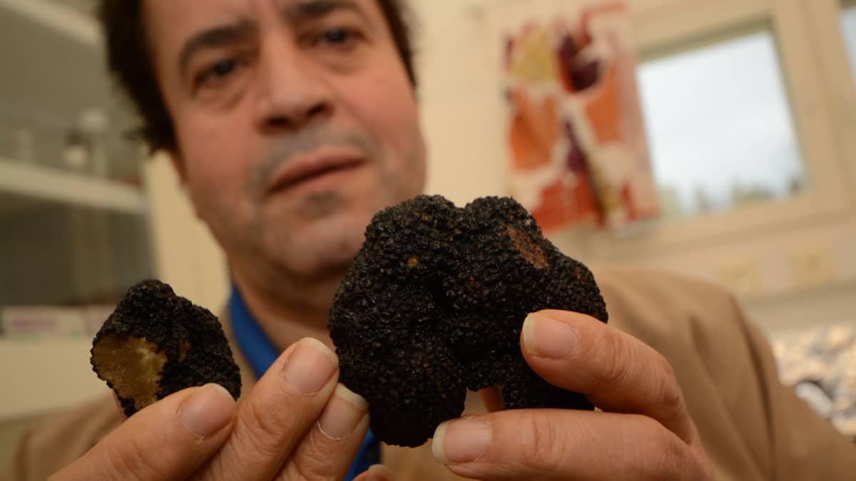 TkT Salem Shamekh, Juvan tryffelikeskuksenjohtaja esittelee mustaa timanttia
