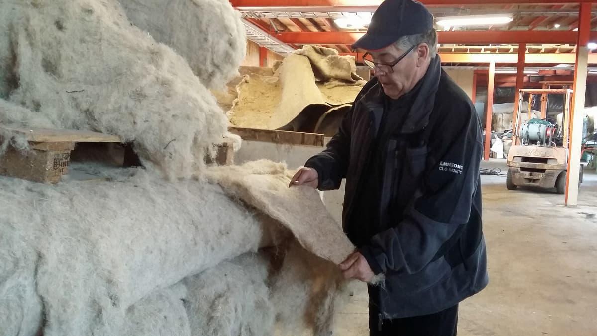 Kauhavalanen Juha Mäkipelkola on kymmenen vuoden aikana opetellut tuntemaan hampun sen viljelystä tuotteistamiseen asti, kantapään kautta.