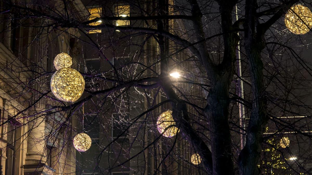 Valoteoksia Hämeenkadun puissa