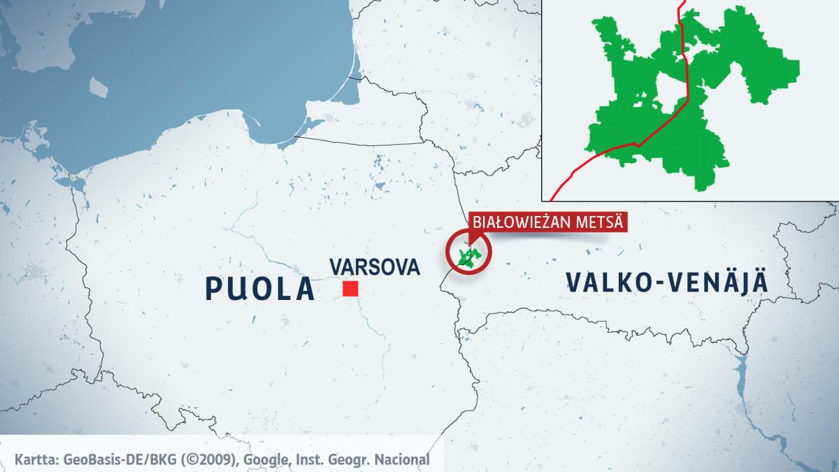 Kartta Bialowiezan metsästä.