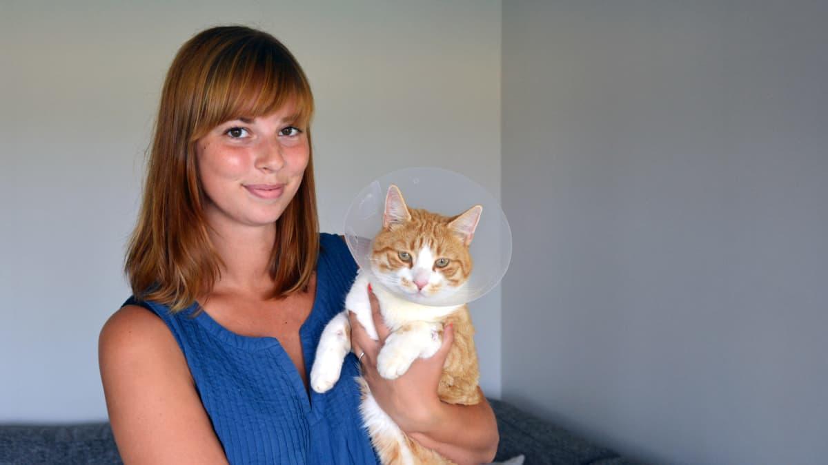 Maria Fränden Sputnik-kissa paranee haavoista, jotka se sai jäätyään todennäköisesti robottiruohonleikkurin alle.