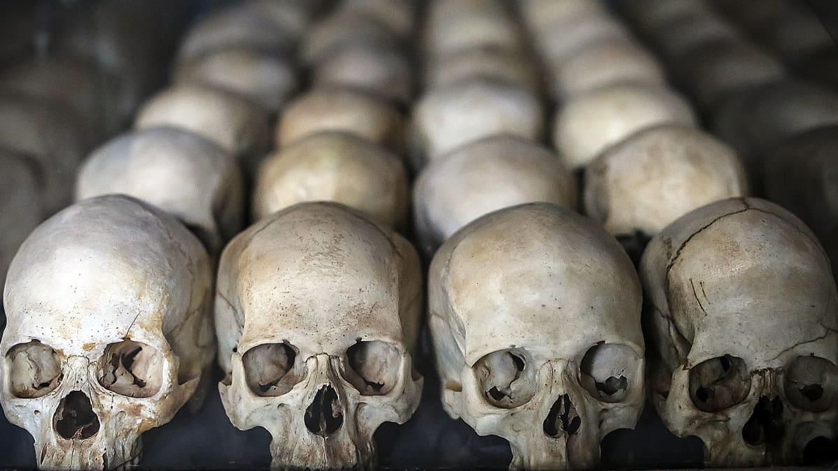 Ruandan vuoden 1994 kansanmurhan uhrien pääkalloja rivissä.