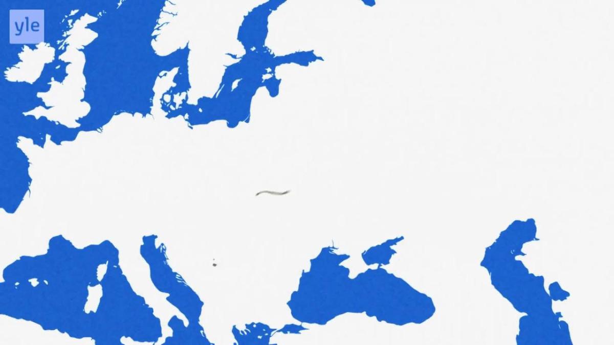Uutisvideot: Mihin maihin suomalaiset ovat muuttaneet?