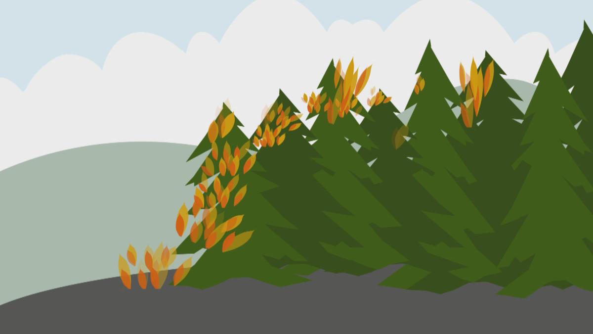 Metsäpaloa animoidusti.