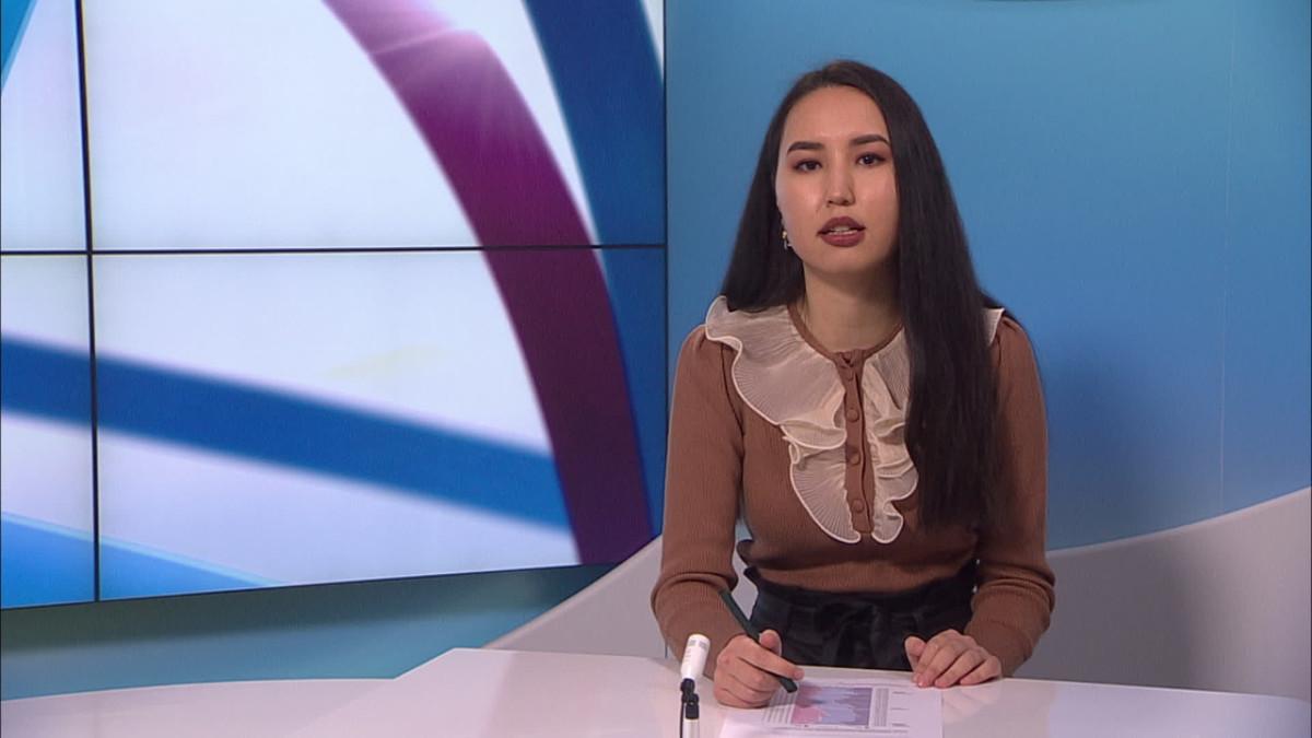 Uutistenlukija Zahra Karimy