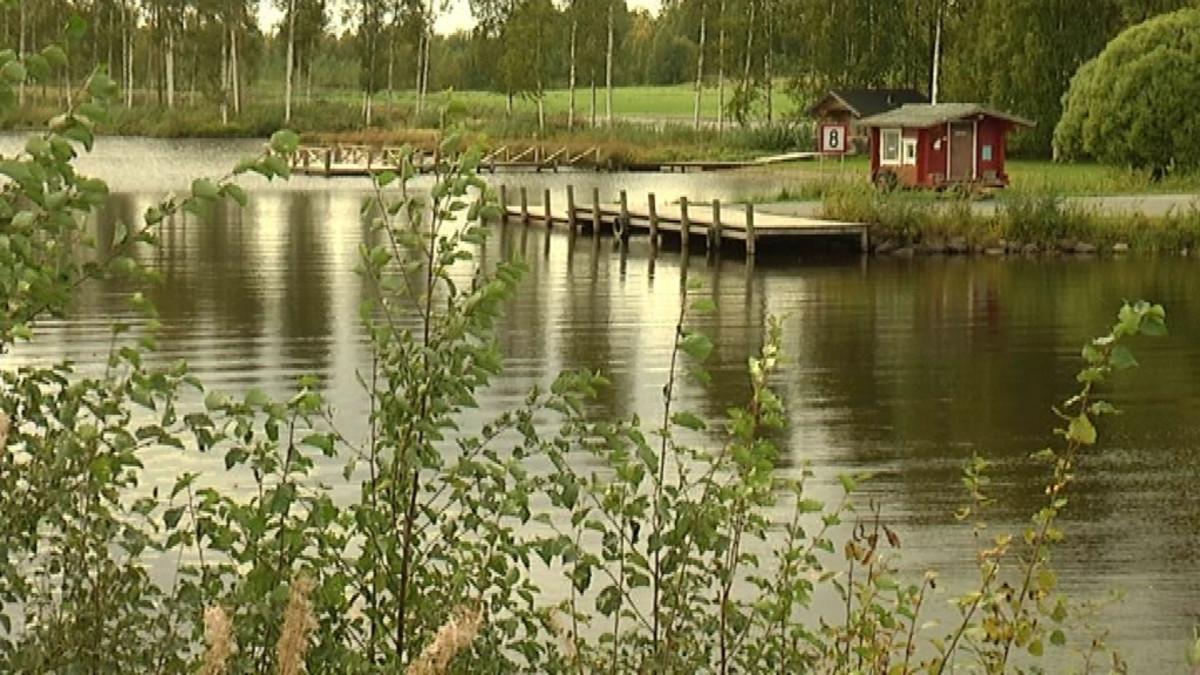Lappajärvi