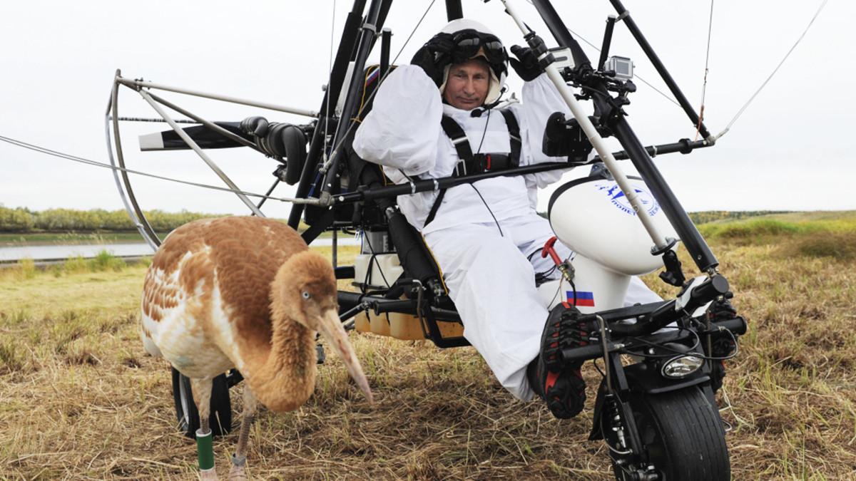 Vladimir Putin osallistui Toivon lento -tapahtumaan, jonka tarkoituksena on suojella erittäin uhanalaista kurkilajia.