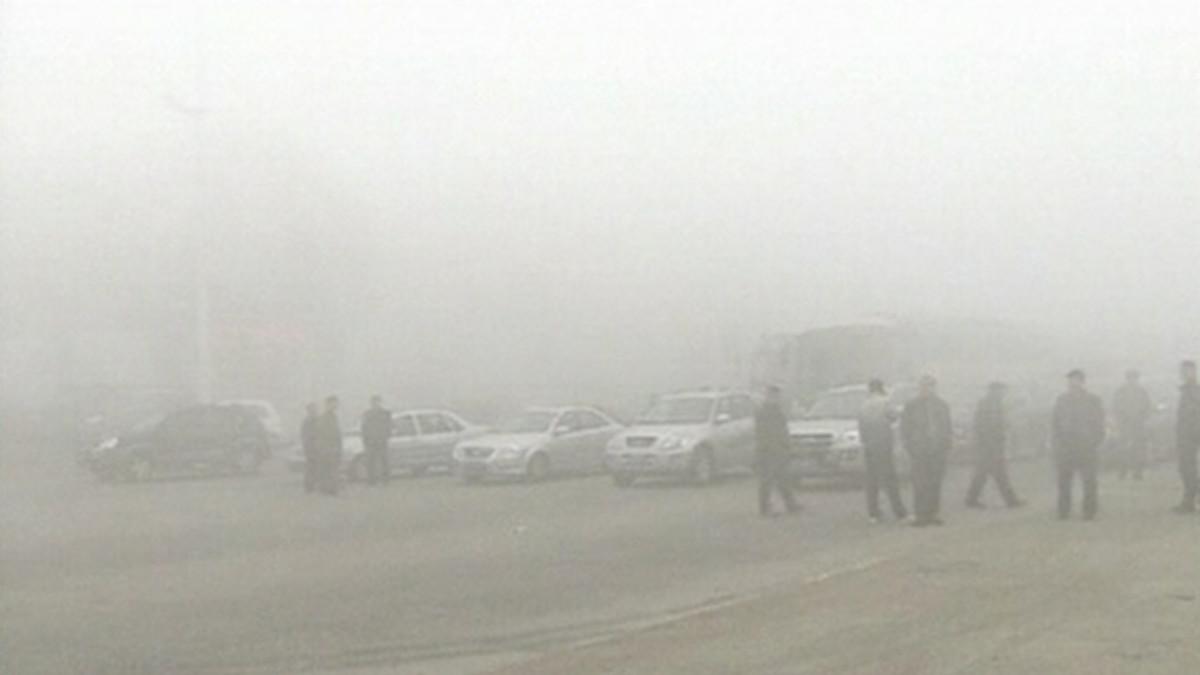 Autoja ja ihmisiä pysähtyneenä maantielle sumun vuoksi.