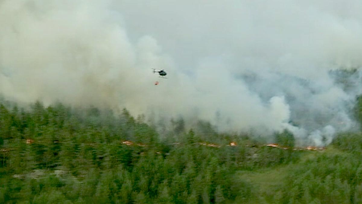 helikopteri savuavan metsän yllä