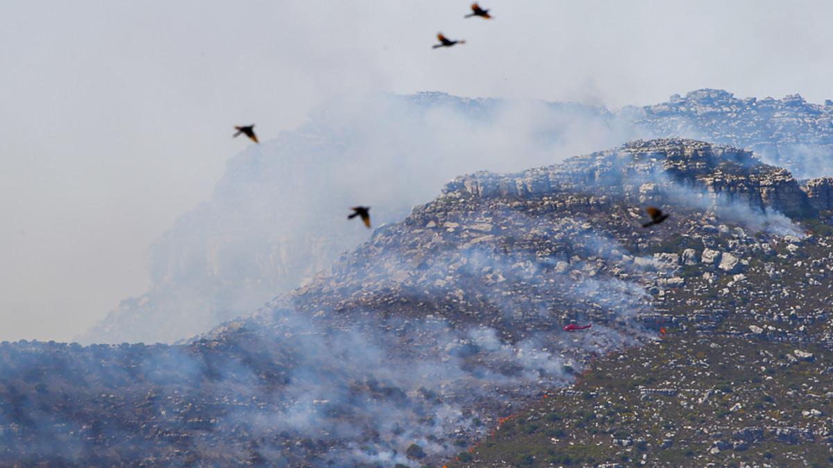 Helikopteri sammuttamassa maastopaloa Kapin niemimaalla.