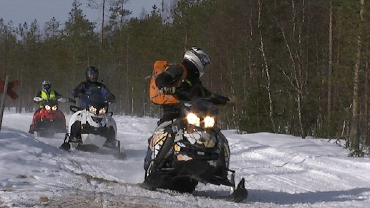 Moottorikelkkasafari Rovaniemellä