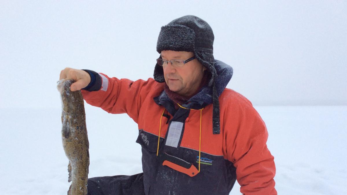 Kalastaja pitelee madetta