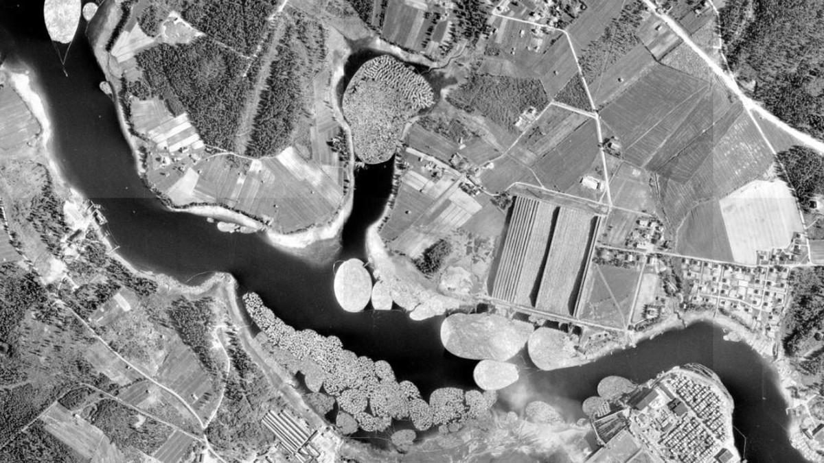 Puita Kajaaninjosessa 1956