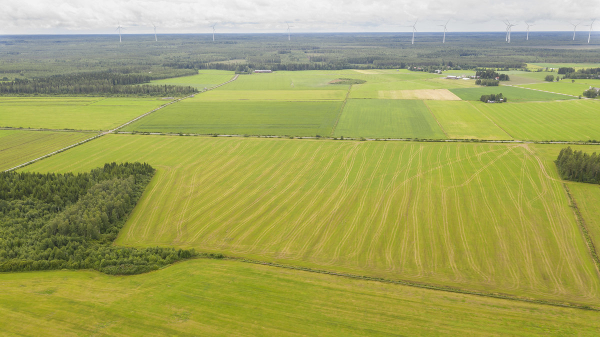 Ilmakuva pelloista. Horisontissa näkyy tuulivoimaloita.