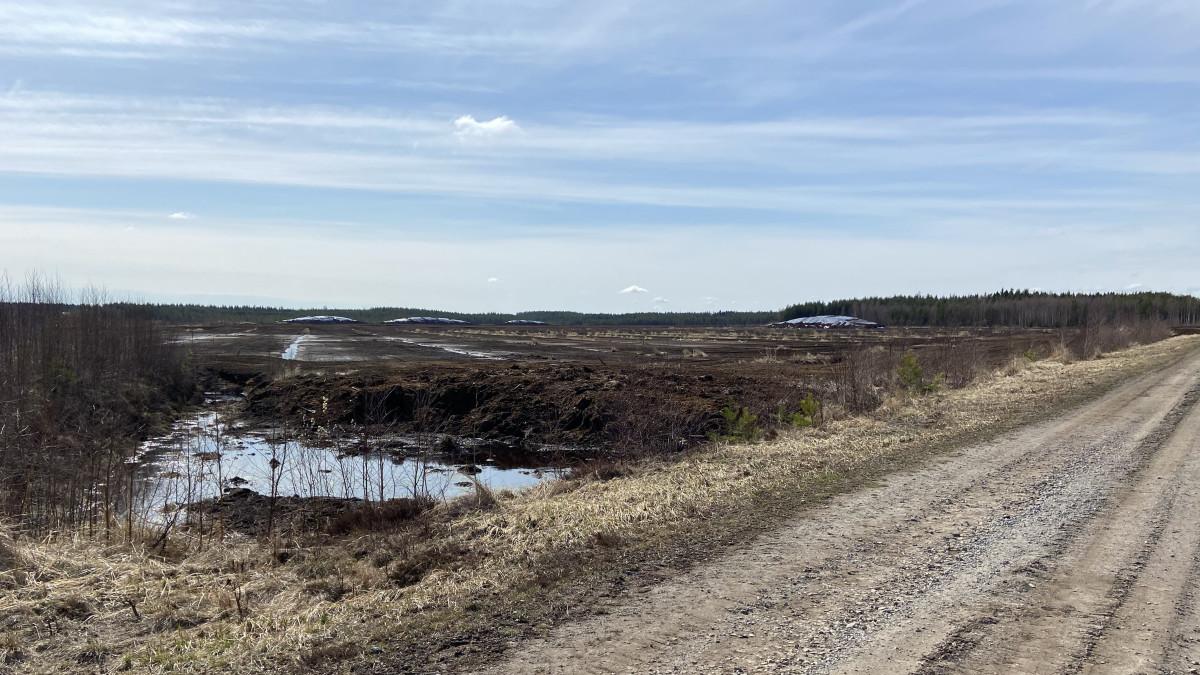 Lapuan Heininevan käytöstä poistuva turvetuotantoalue.