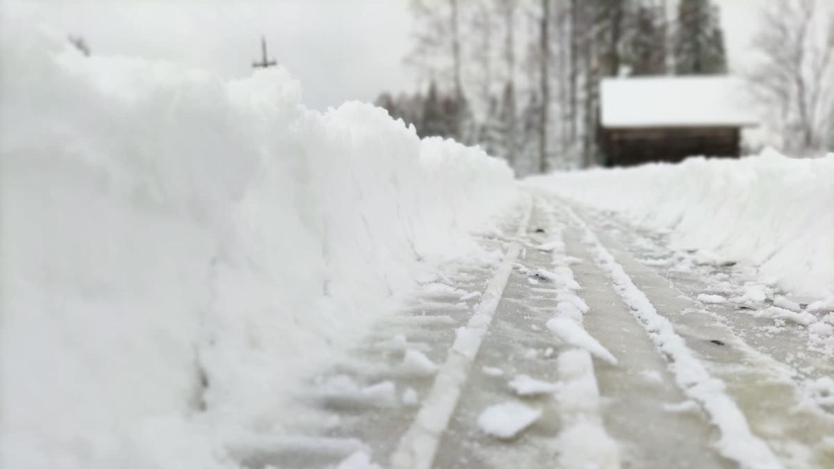 Lumipyry saapui Pohjois-Karjalaan