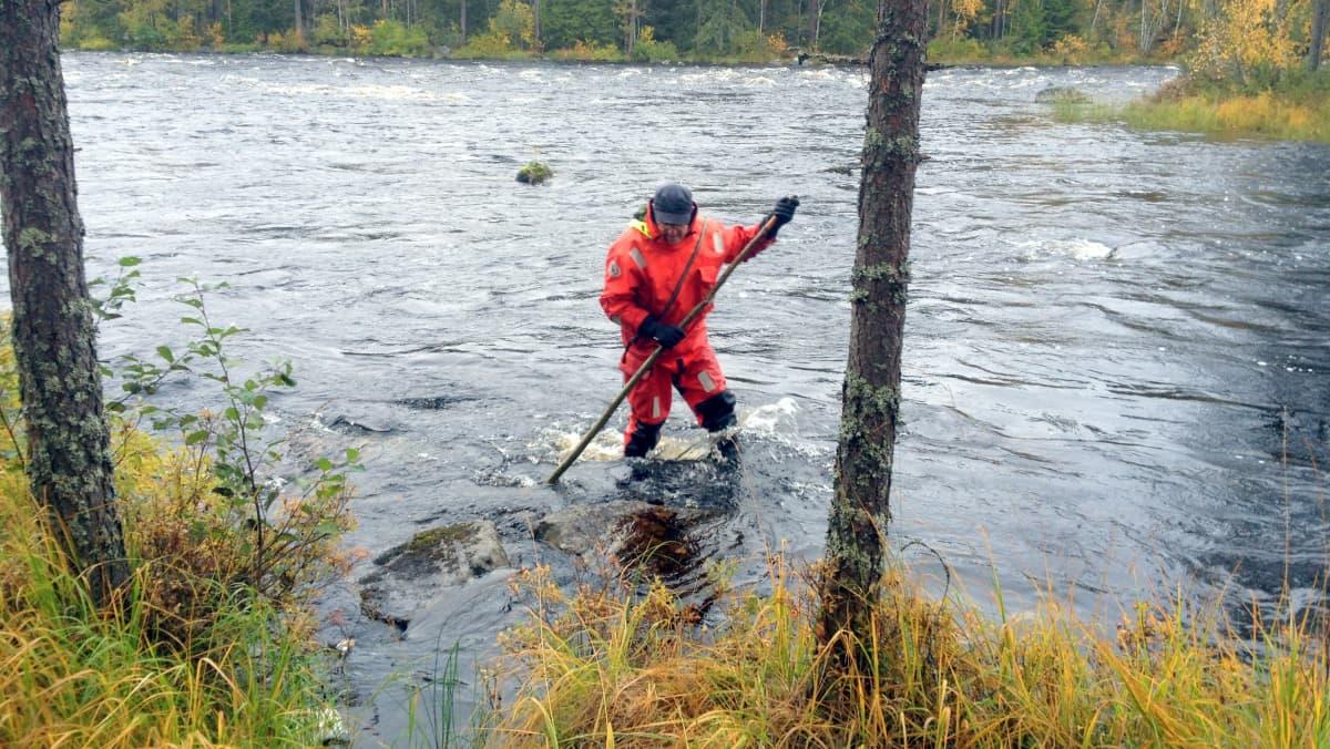 Luonnonvarakeskuksen tutkimusavustaja Esa Simonen tekee pohjakartoitusta Lieksan Naarakoskessa.