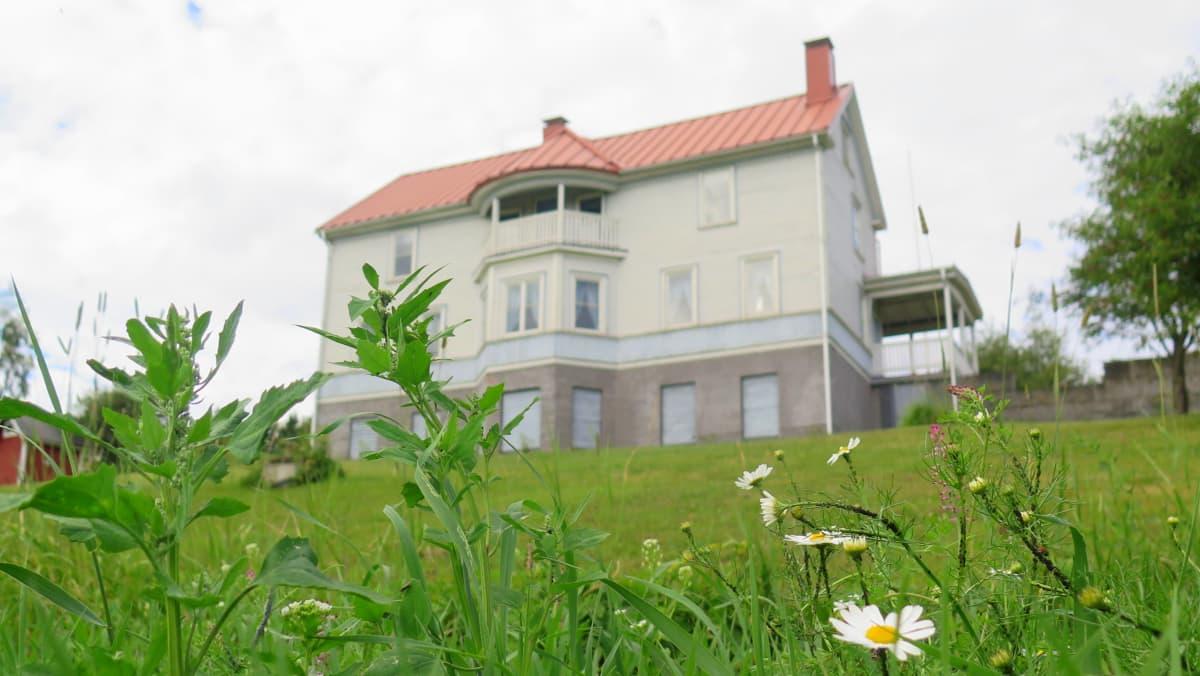 Hämeenkyrön maisemakahvilan talo rinteessä