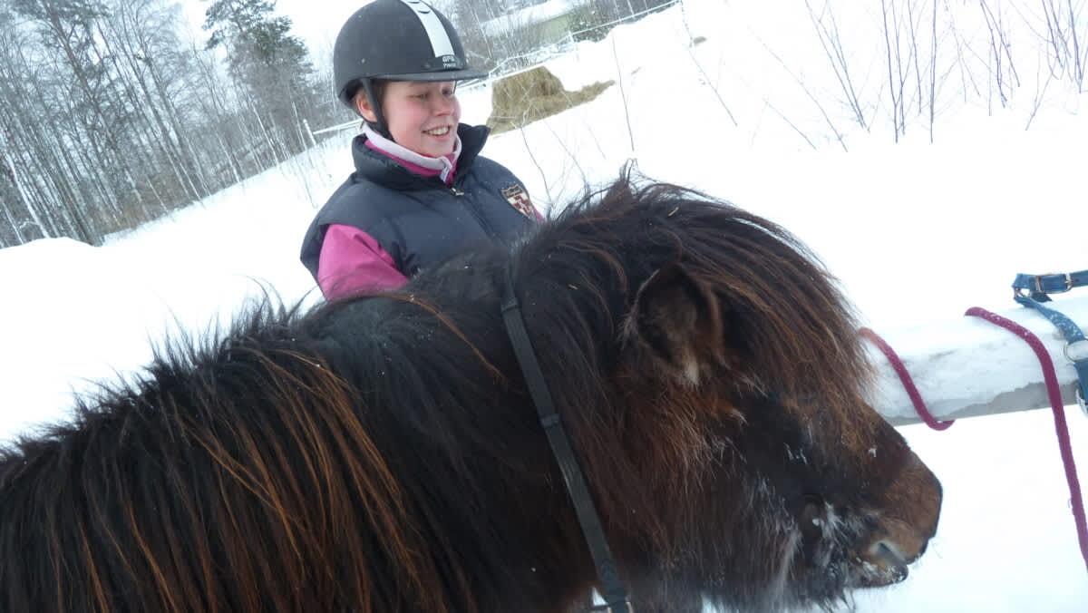 Sosiaalipedagogisen hevostoiminnan  ohjaaja Tiina Jokinen rapsuttaa islanninhevosta.