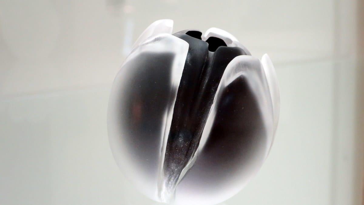 Lasinen valkomusta tulppaani , jonka terälehdet näyttävät irrallisilta