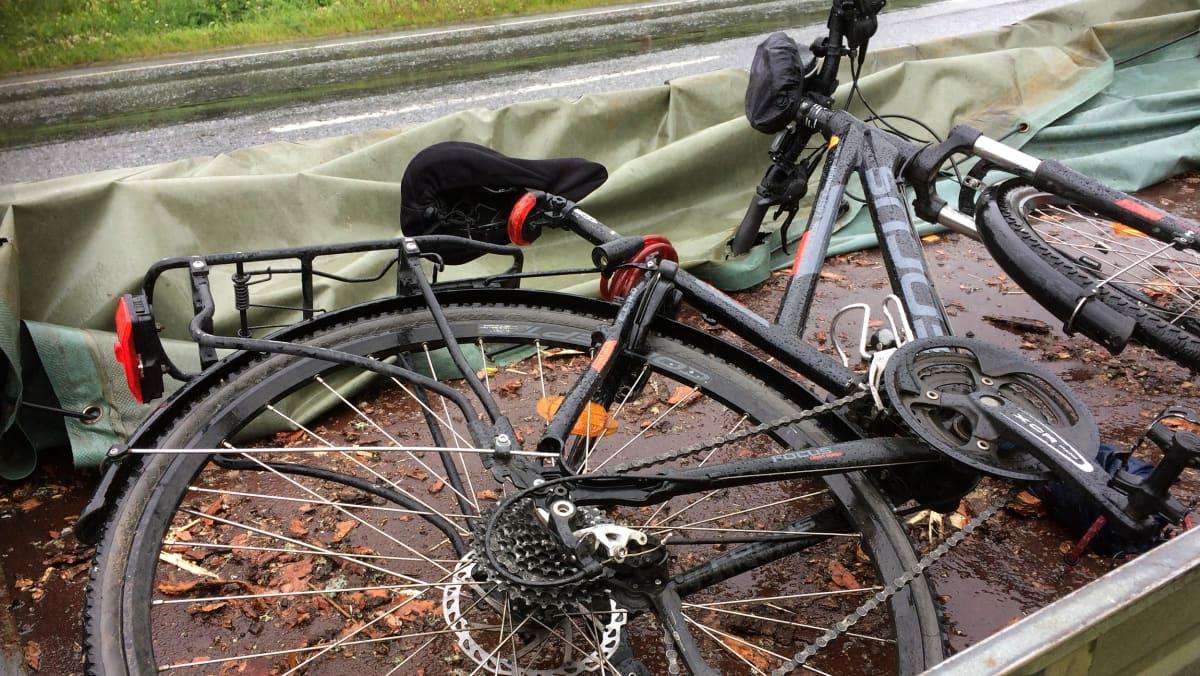 Rengasrikki, polkupyörä peräkärryssä.