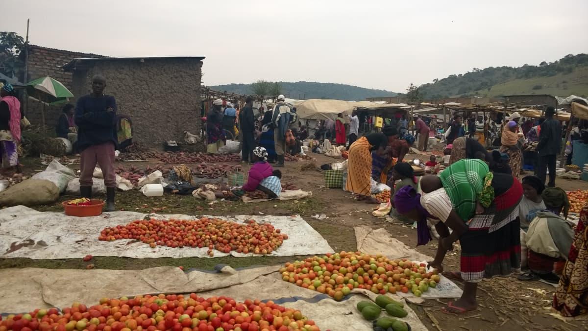 Pakolaisasutusalueista tulee pieniä kaupunkeja. Tässä kaupataan tomaatteja viikottaisilla markkinoilla Nakivalen pakolaisasutusalueella Länsi-Ugandassa.