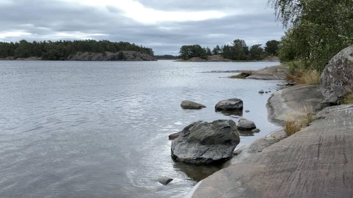 Tvärminnen eläintieteellisellä tutkimusasemalla on seurattu Suomenlahden tilaa pitkäaikaisseurannalla pian sadan vuoden ajan.