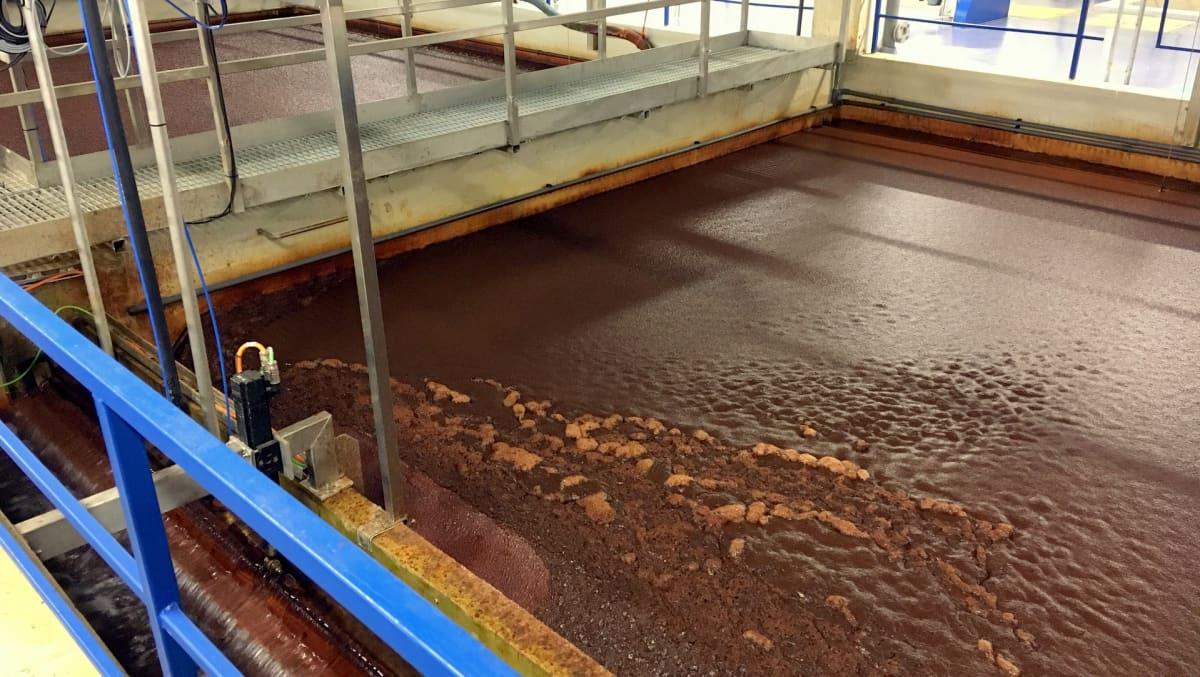 Humusta saostetaan raakavedestä suurissa altaissa