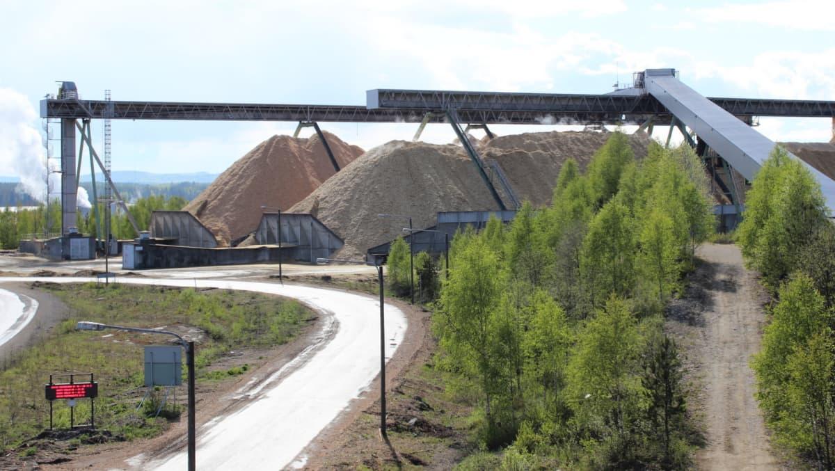 Hakekasoja Stora Enson Enocellin tehtaalla.