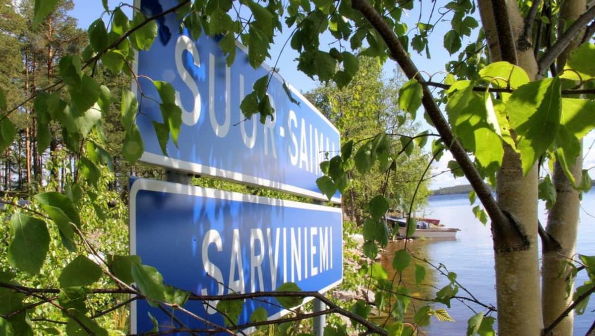 Sarviniemi
