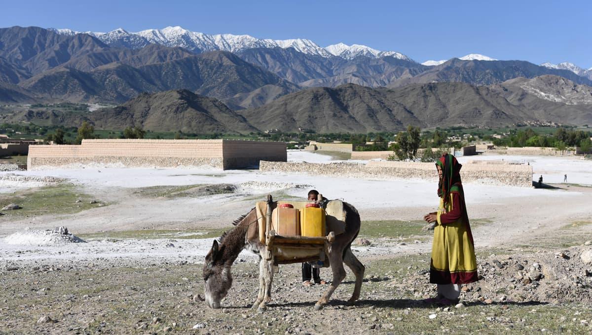 Afganistanilaisen tytön ja aasin takana näkyy vuoristo, jonne Yhdysvallat pudotti GBU-43 -pommin.