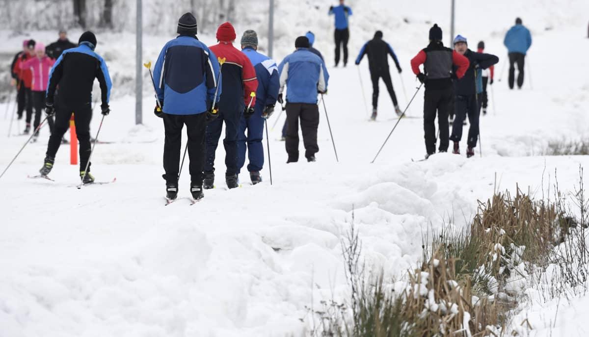 Hiihtäjiä Espoon Oittaalla 8. tammikuuta. Sittemmin lunta on tullut Oittaalle toistakymmentä senttiä lisää.