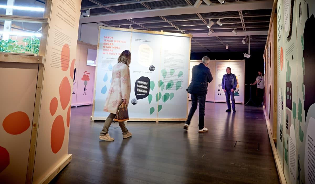 Helsingin kaupunginmuseon vierailijoita