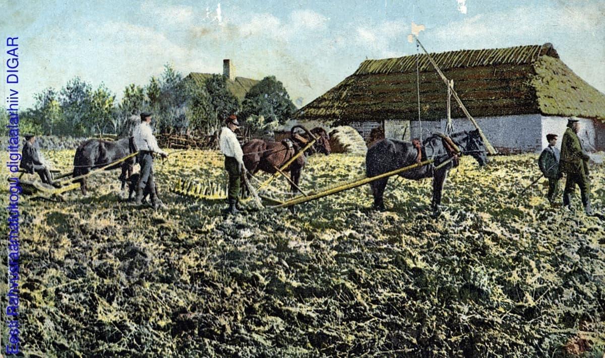 Kyntönmiehiä ja kolme hevosta, taistalla kaksi maalaistaloa.