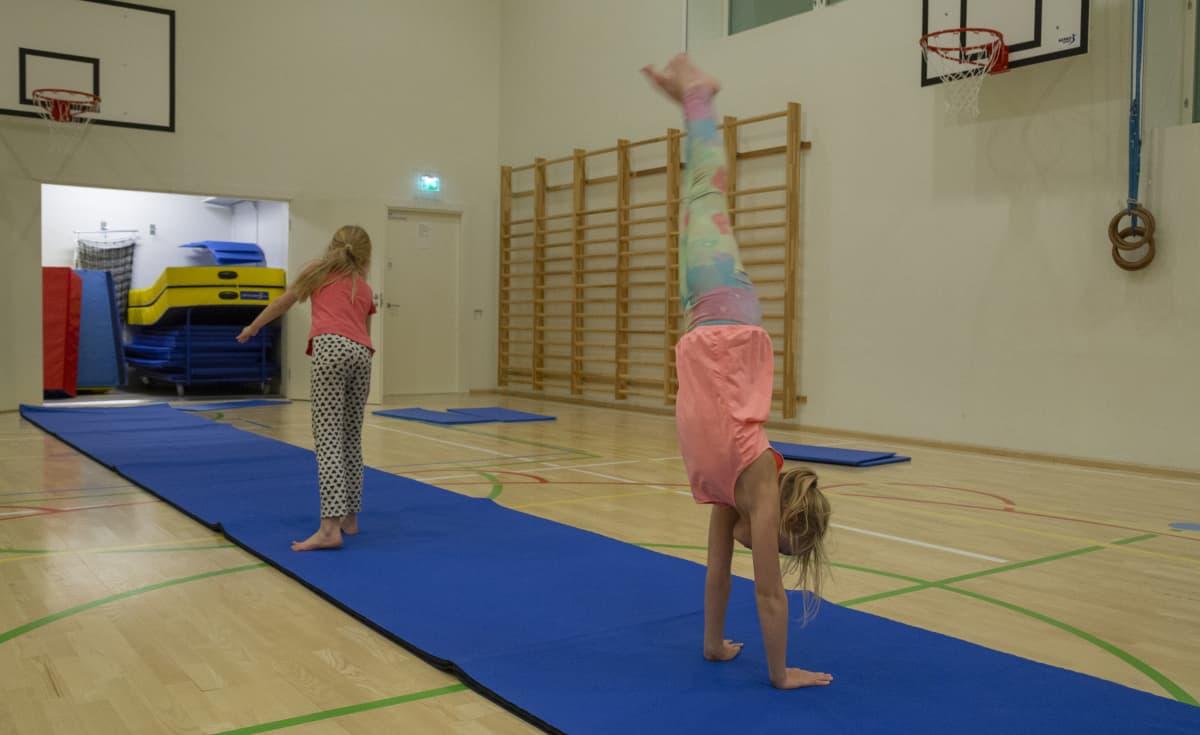 Lasten liikunta / Eevi ja Hilda/ Viikintoimipiste 28.01.2019