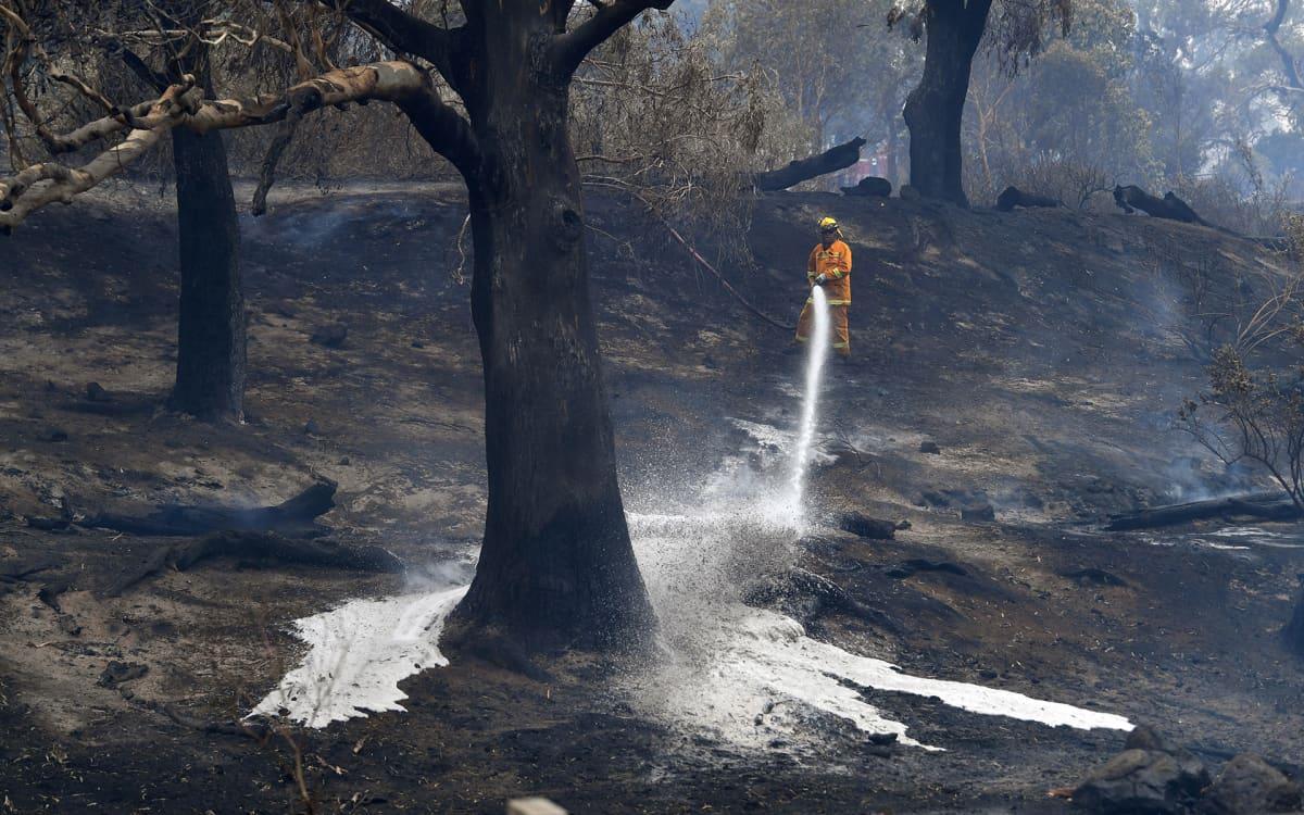 Palomies sammutti maastoa Bundoorassa, Melbournessa 30. joulukuuta.