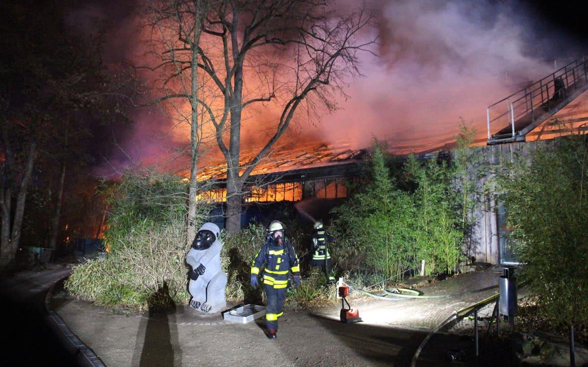 Palomiehet sammuttivat apinataloa Krefeldissä, Saksassa 1. tammikuuta.