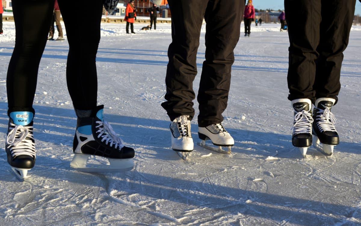 Luistelemassa Kallaveden jäällä, jäämaratonradalla