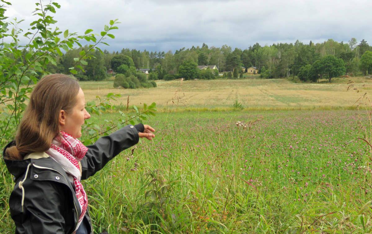 Arkeologi Kristin Ilves osoittaa kädellä apilaniityn yli pellolle. Taustalla häämöttää maalaistalo.